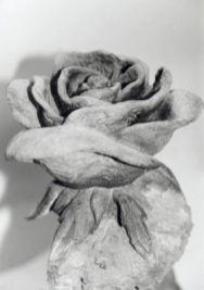 rosa-pietra scolpita
