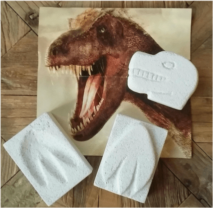 Tyrannosaurus rex with gypsum head and paw prints