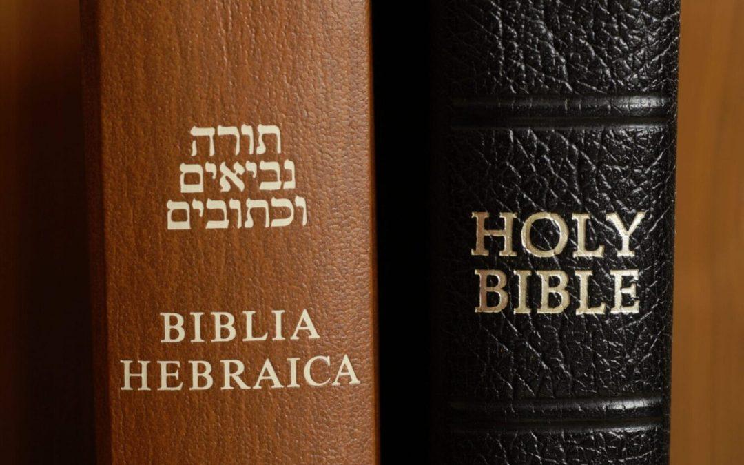 Protetto: I. Introduzione alla Torah – I p.a. Cosa racconta la Torah?