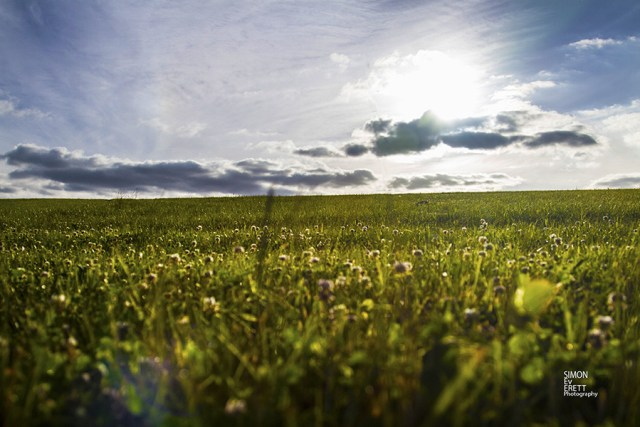 landscape in kent