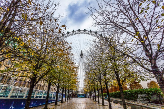 London Eye view 2014