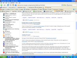 Newsgator screengrab - small