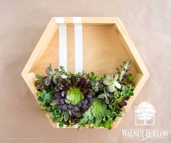 10 Modern Hexagonal Planter Simphome com