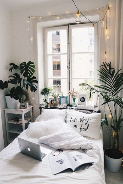 1. Add Plants into the Space via Simphome