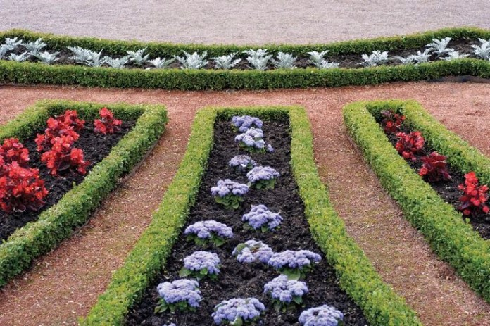 8. Create an Edging with Plants via Simphome