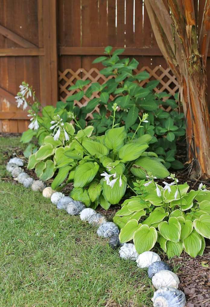 garden edging ideas and the tools to help maintain a professional with regard to 10 diy garden edging ideas most of the amazing and gorgeous