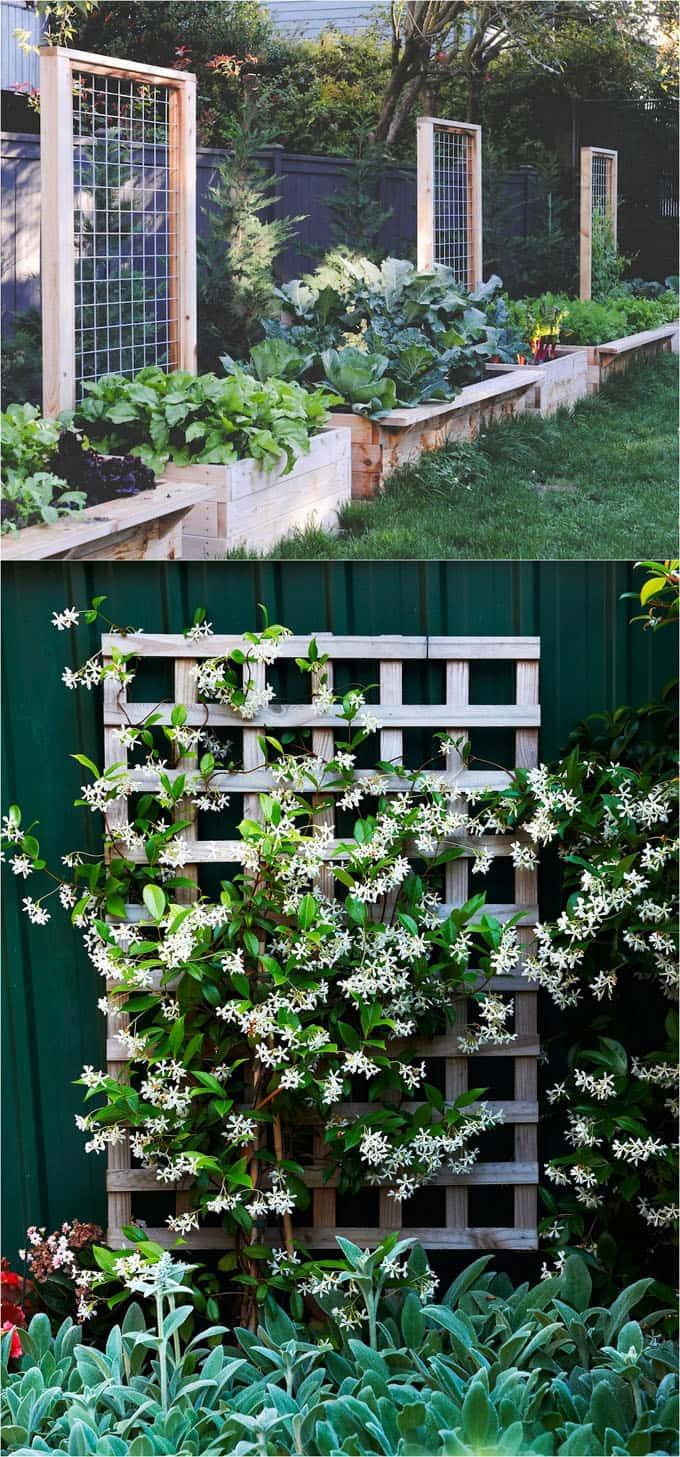 Simphome.com 20 easy diy garden trellis ideas vertical growing structures throughout garden trellis ideas