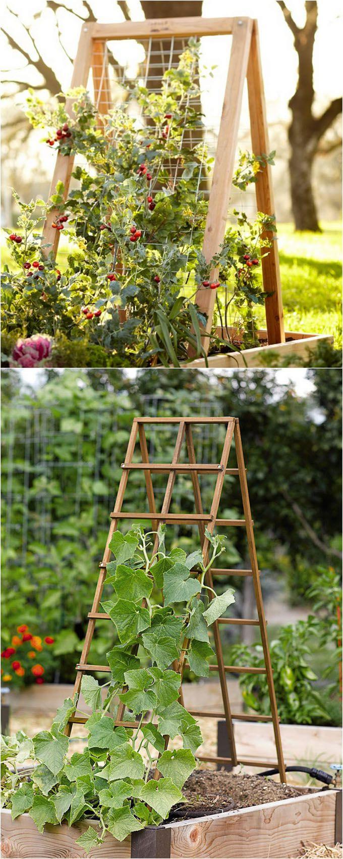 Simphome.com easy diy garden trellis ideas vertical growing structures a throughout years 2021 2022 2020
