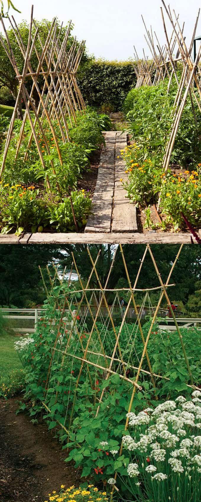 Simphome.com easy diy garden trellis ideas vertical growing structures