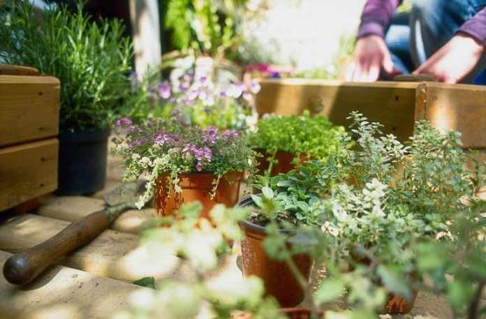 10. Keep the Plants down to a Minimum by Simphome.com 2