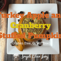 Turkey Apple and Cranberry Stuffed Pumpkins