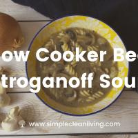 Slow Cooker Beef Stroganoff Soup