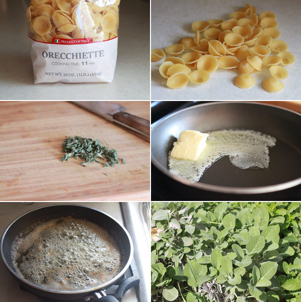 Recipe for Pasta with Sage and Brown Butter