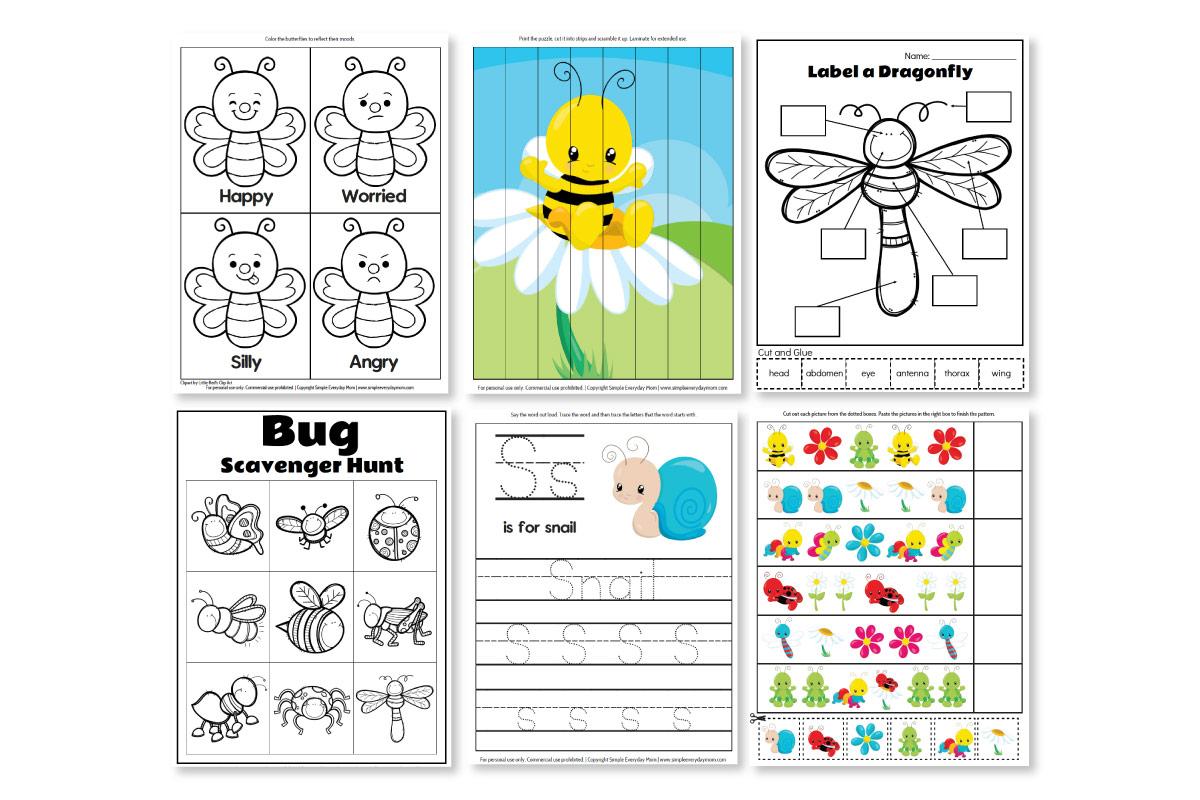 Printable Preschool Bug Activities For Learning Amp Fun