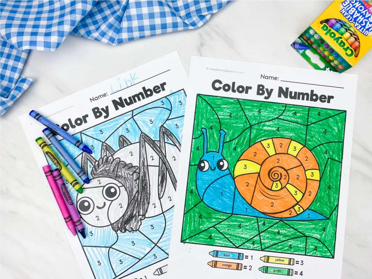 Bug Color By Number Printables