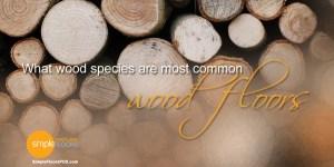 Popular species of wood for hardwood floors