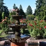 Rose Garden Fountain in PDX