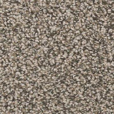 Crater Lake Earthen Residential Carpet by TAS Flooring
