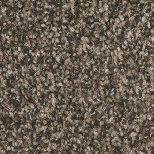 Crater Lake Rimrock Residential Carpet by TAS Flooring