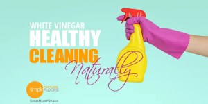 Natural and Healthy Cleaning Solution