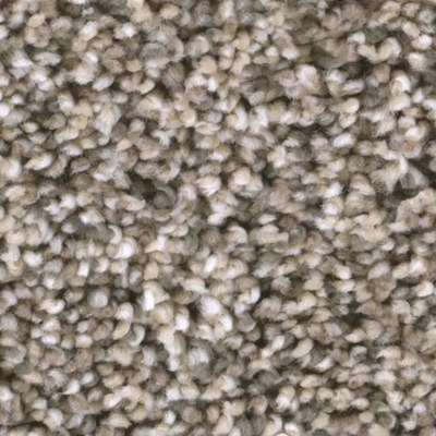 Tas Badlands Grasslands Residential Carpet in Portland