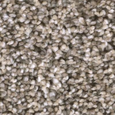 Tas Badlands Grasslands Residential Carpet in Portland