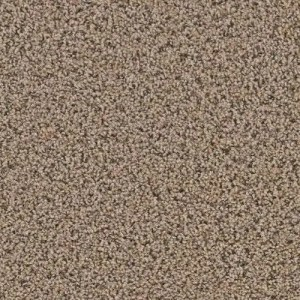 Yellowstone Clovis Carpeting by TAS Flooring