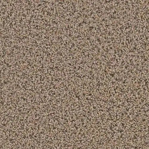 Yellowstone Clovis Carpeting by TAS Flooring