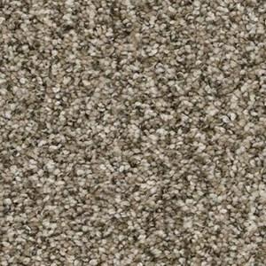 Yosemite Sagebrush Carpet by TAS Flooring in Portland