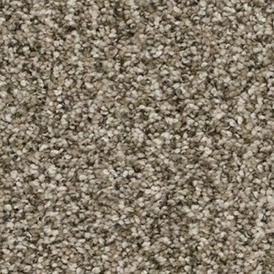 Yosemite Sagebrush Carpet by TAS Flooring in Portland