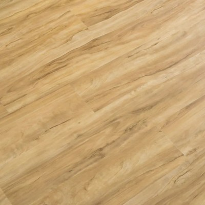 Csali LVT - Blonde Ale PRO Wide+ Click with I4F