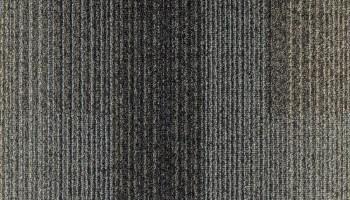 Tas Bandwidth Development Iron Ore Commercial Carpet in Portland