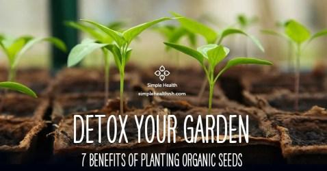 Detox Your Garden