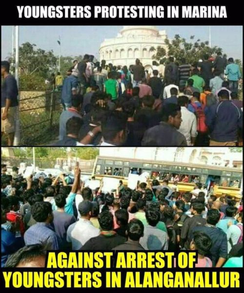 Justice For Jallikattu Protest