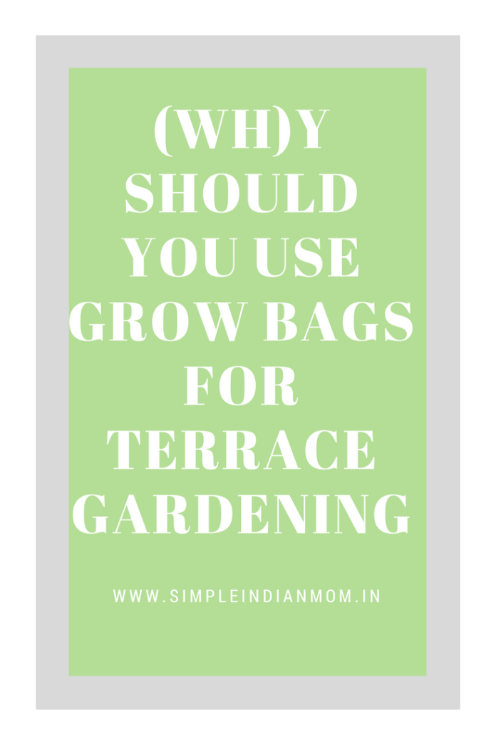 Grow Bags for Terrace Gardening