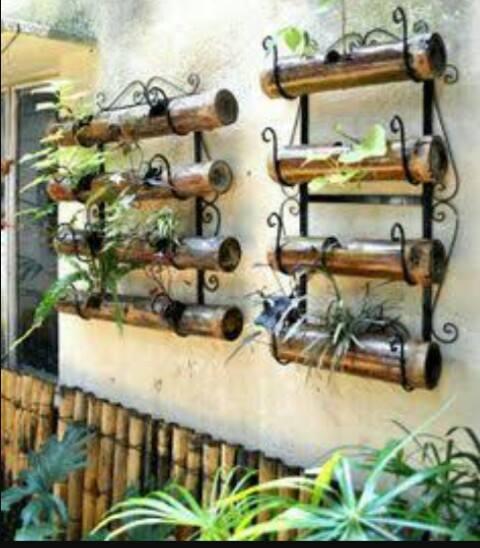 Designing Organic Vegetable Garden