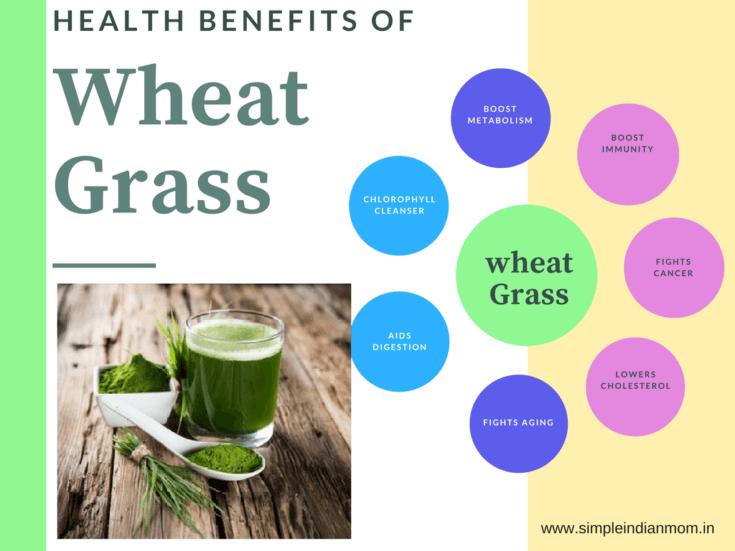 Health Benefits Of Wheat Grass - SIM Organics
