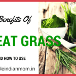 Wheat Grass  Health Benefits, Nutrition and How To Use