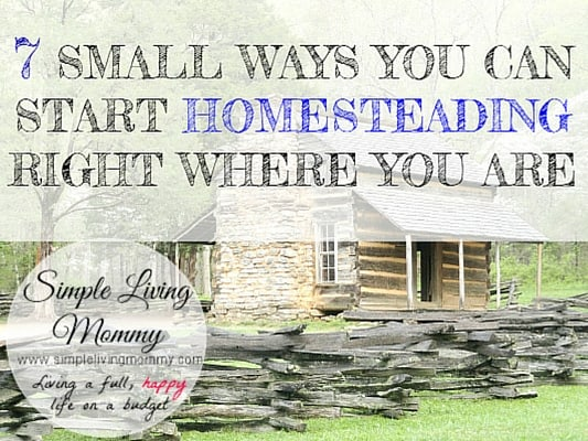 7 Small Ways You Can Start Homesteading Right Where You Are