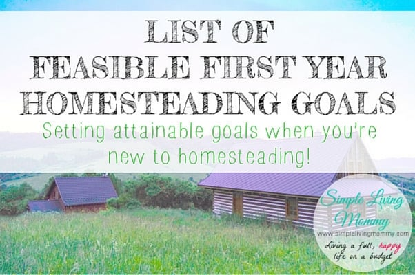 List of Feasible First Year Homesteading Goals
