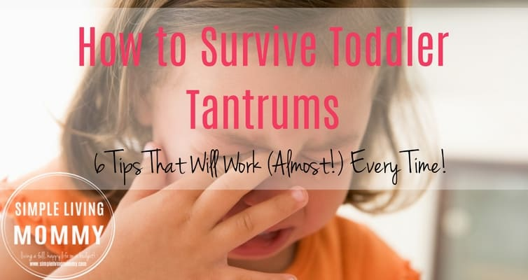 How to Survive Toddler Tantrums