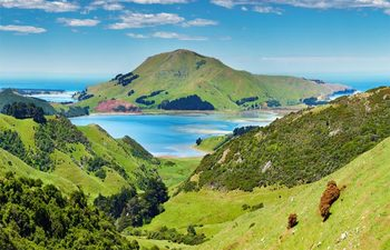 Dunedin coast from a Norwegian Cruise Line sailing