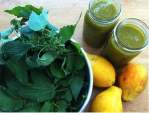blending-smoothies-and-fiber-300x227