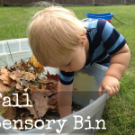 Fall Sensory Bin: Squirrel Play