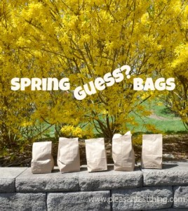 Sense of Touch Activity: Touch of Spring