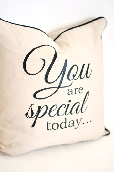 you are special pillow----simple simon and company_edited-1