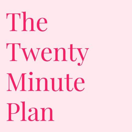 The Twenty Minute Plan
