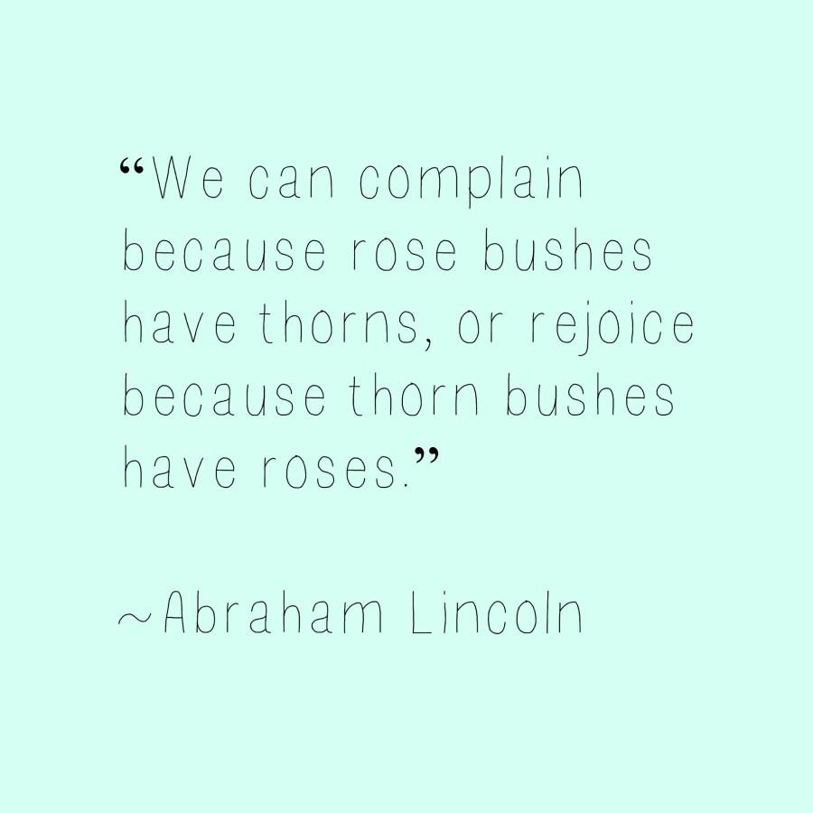 rosesbushesthorns