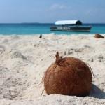 coconut oil good for skin