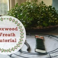 How to Make a Boxwood Wreath for $6 {A Tutorial}